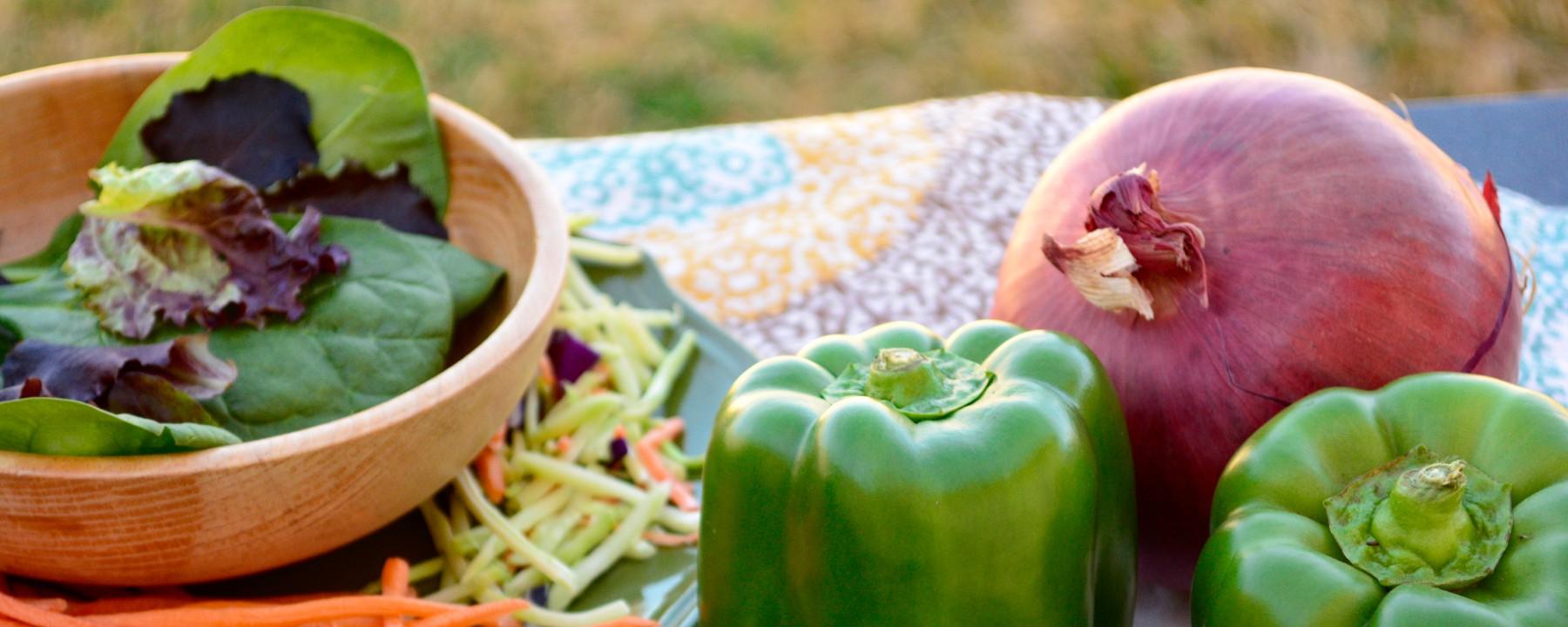 low potassium, low phosphorus, vegetarian and CKD, renal diet, CKD diet, diet for kidney disease
